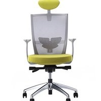 Xenic Chair