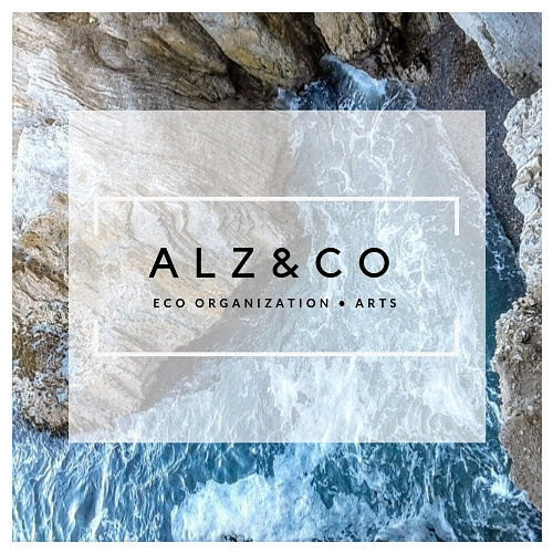 ALZ COMPANY