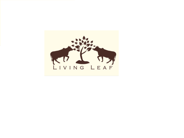 Samyak Natural LLP