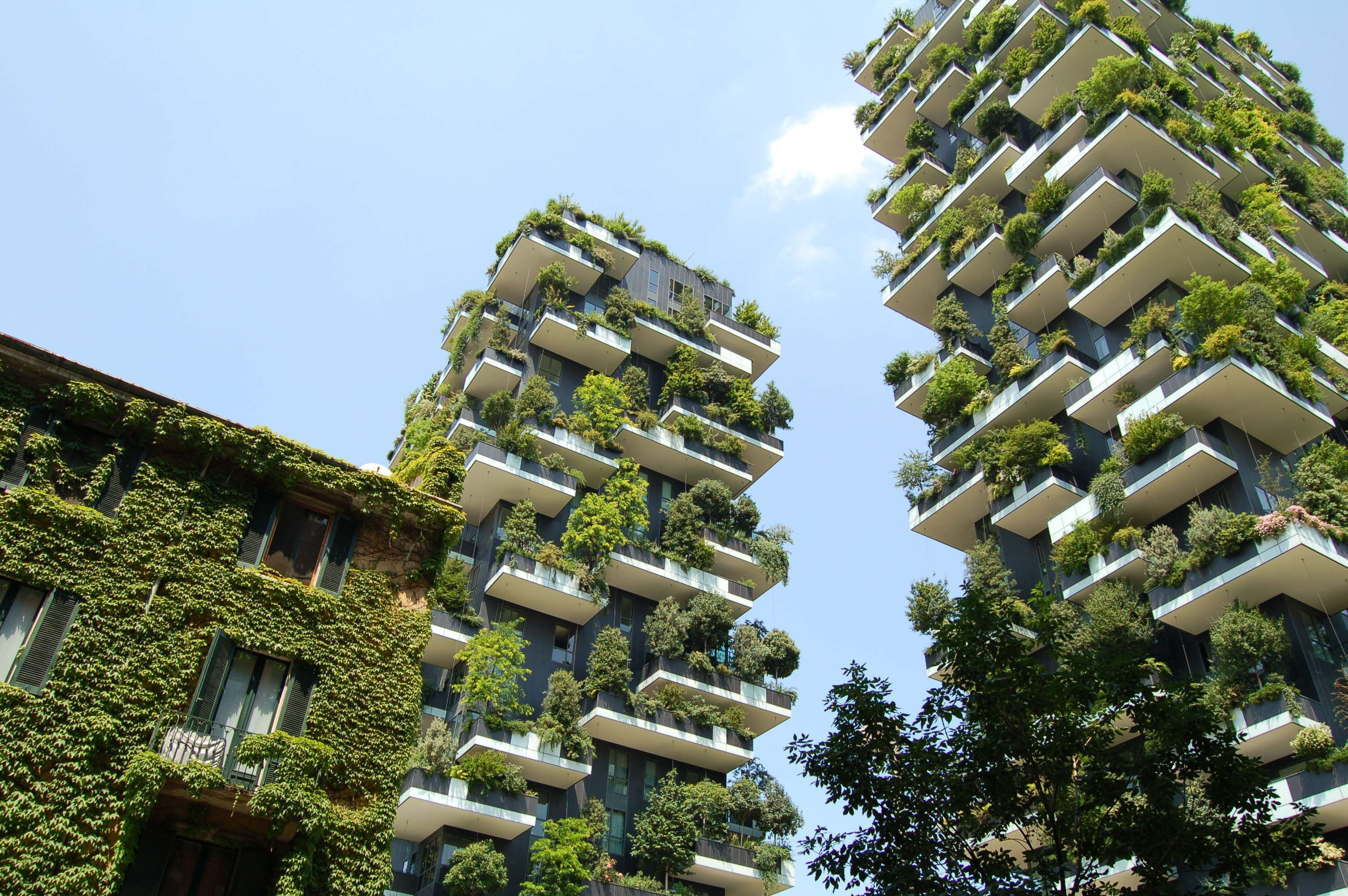 People are less likely to fall sick in green buildings, study finds