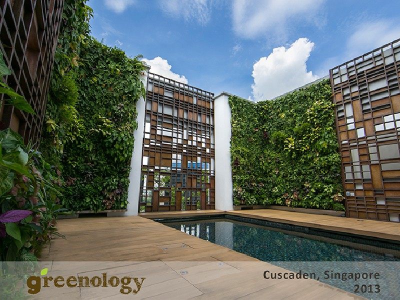 Greenology Vertical Greenery