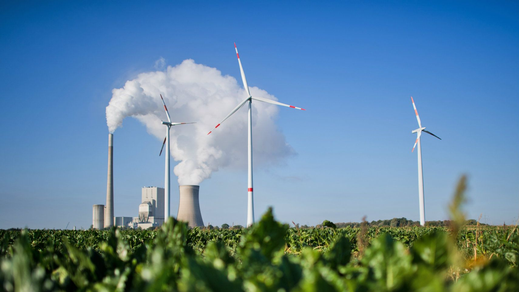 Germans switch on to green power