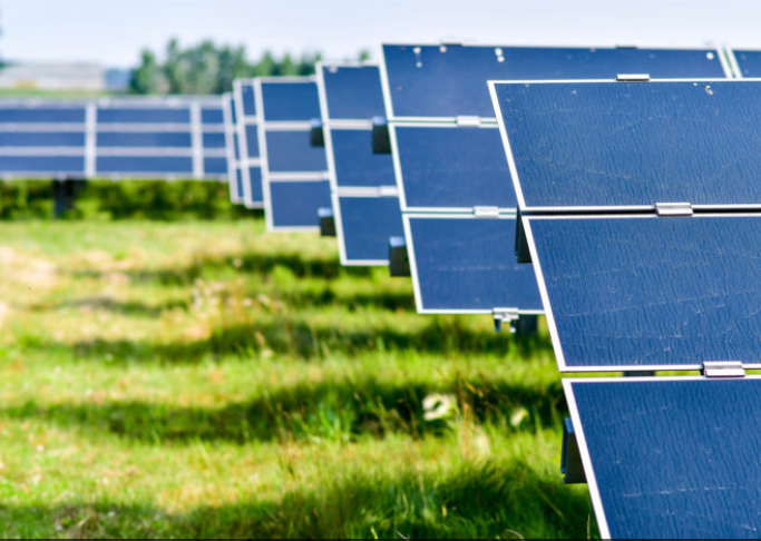 Firms agree terms to manage 50MW of community solar