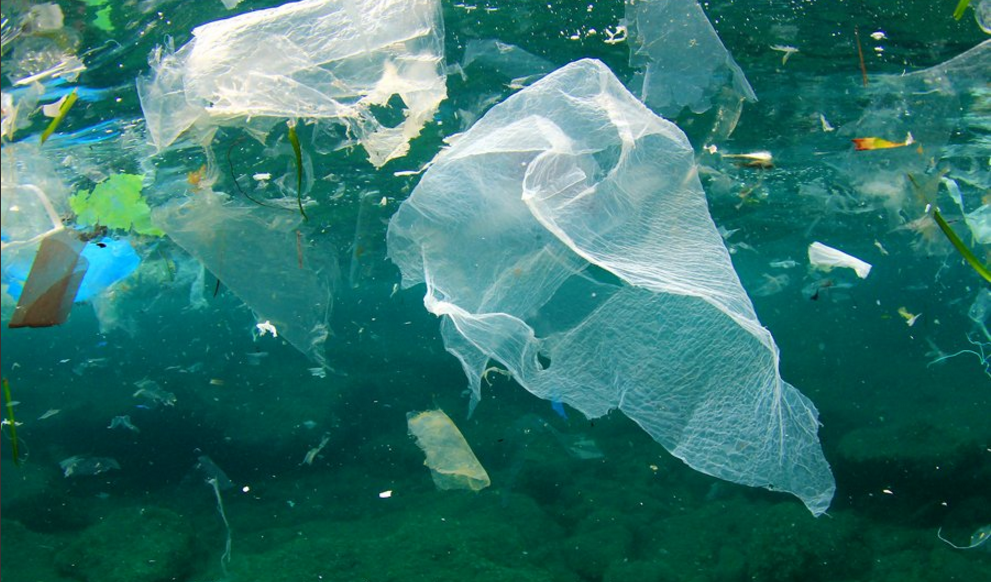 16 Times Countries and Cities Have Banned Single-Use Plastics