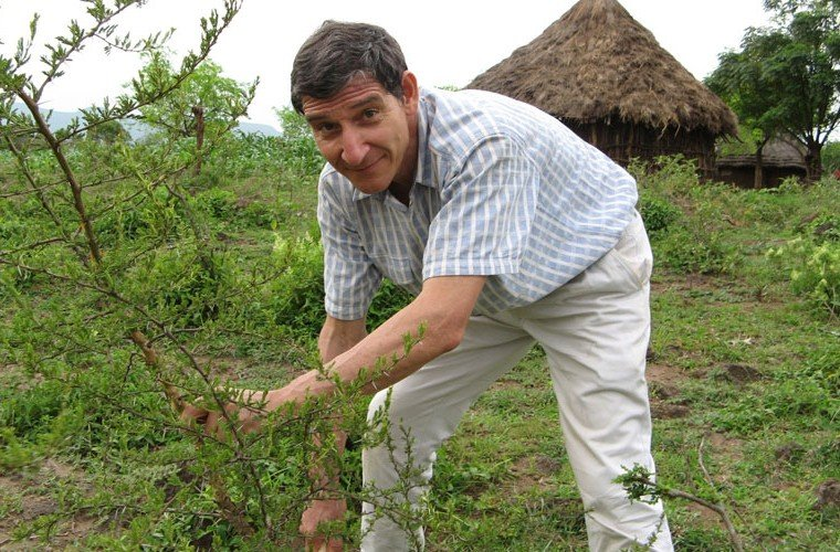 This Man Restored 240 Million Trees in West Africa — and They Could Help Fight Hunger