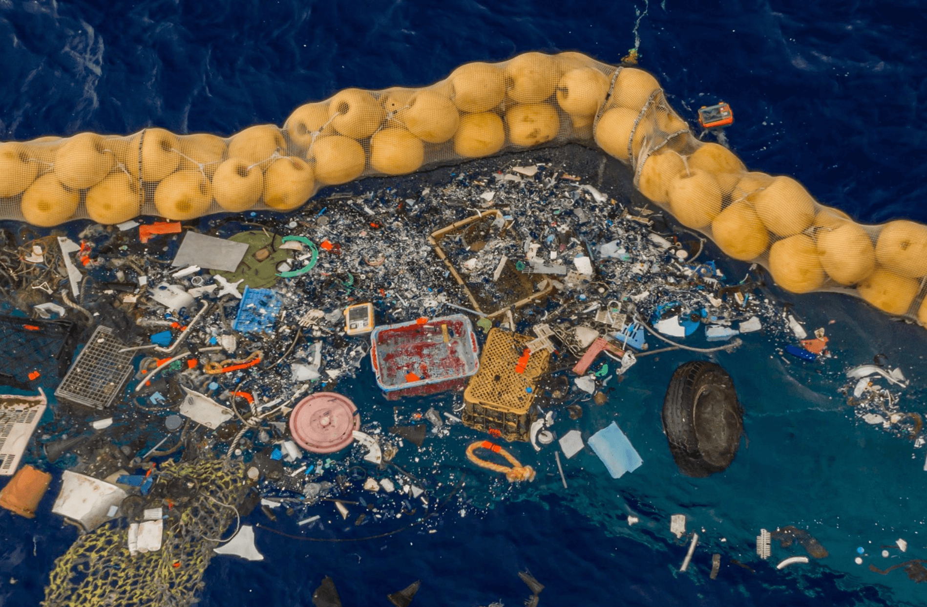 Plastics Will Outweigh Fish in The Ocean: How Does It Affect You and What Should You Do?