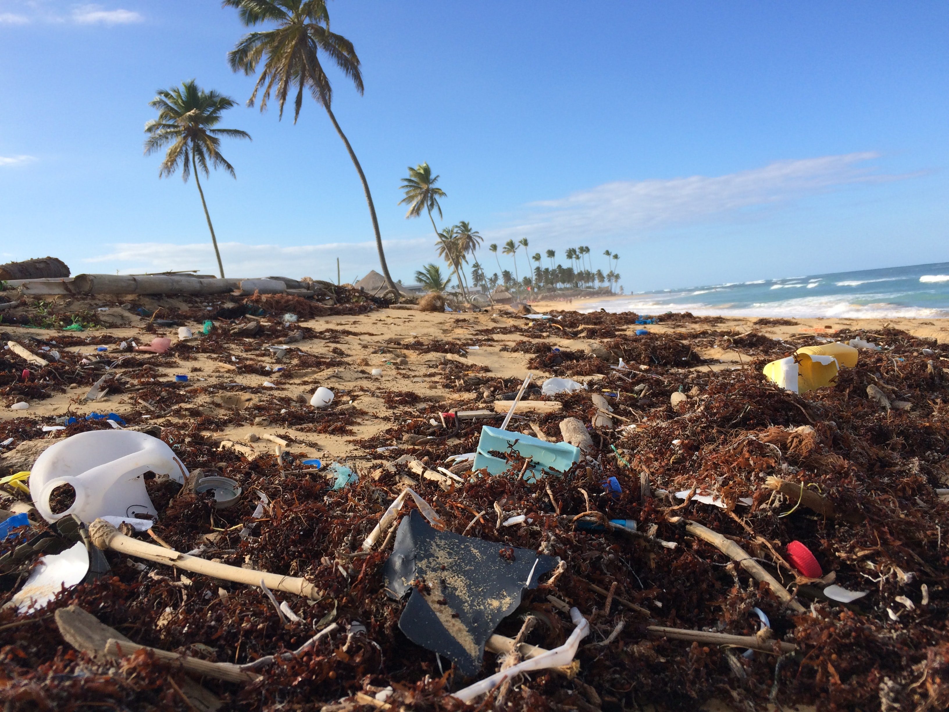 Using Artificial Intelligence to track ocean plastic