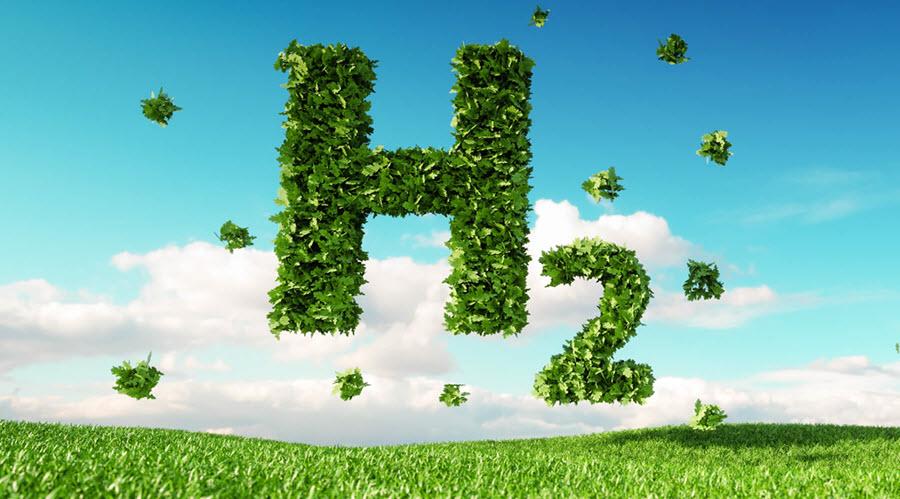 EU Hydrogen Alliance Clean Hydrogen Alliance launched