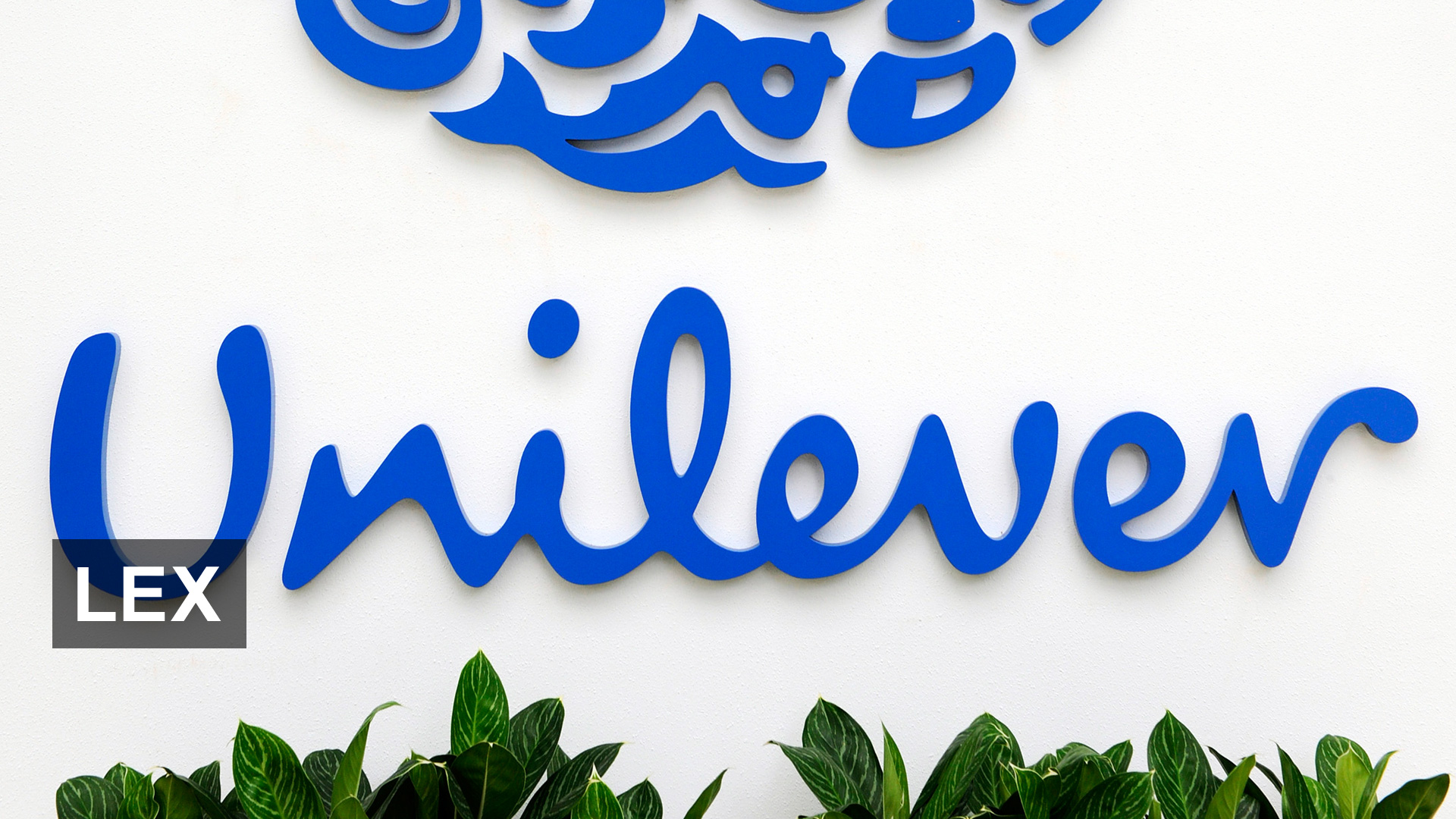 Unilever pledges to invest €1bn in eliminating fossil fuels from cleaning products by 2030
