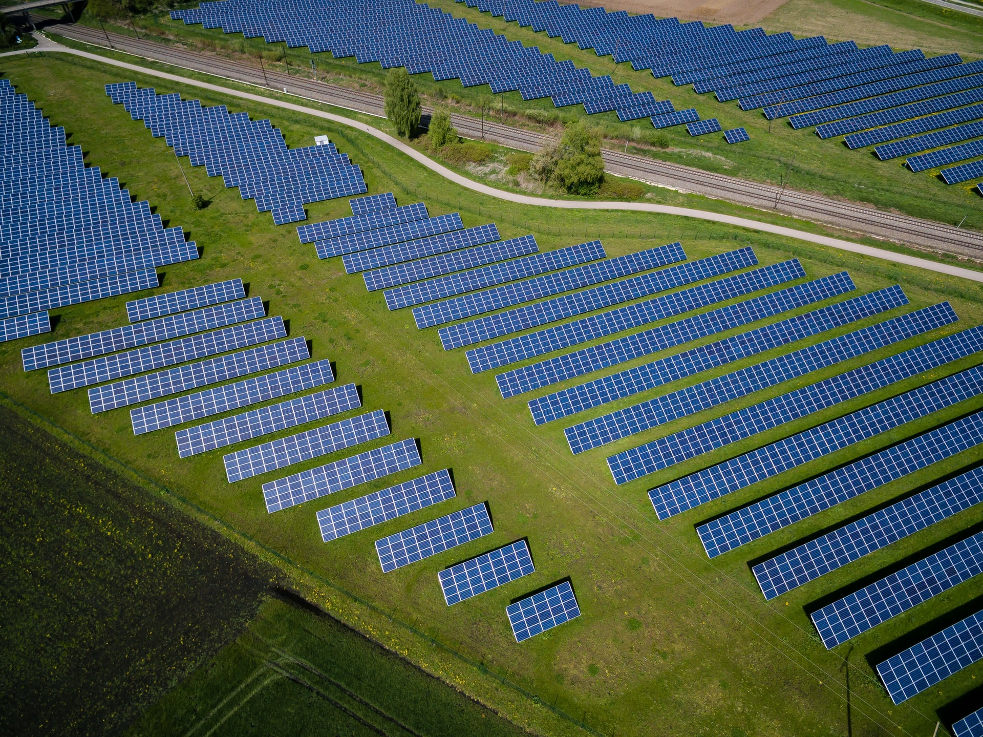 Australian outback cattle station to house world's largest solar farm, powering Singapore