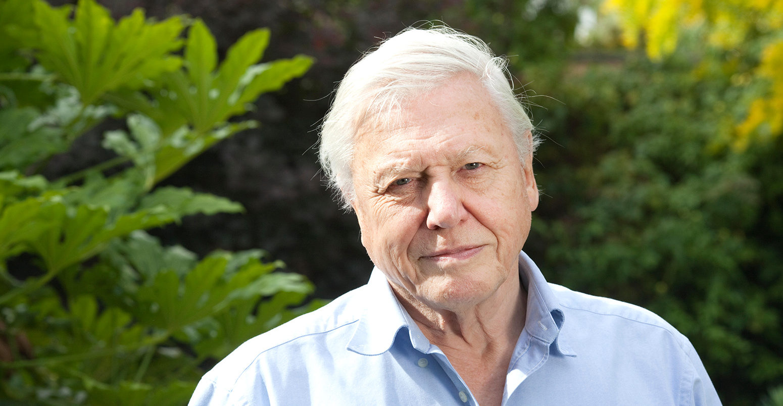 Attenborough says $US500b a year needed to save earth