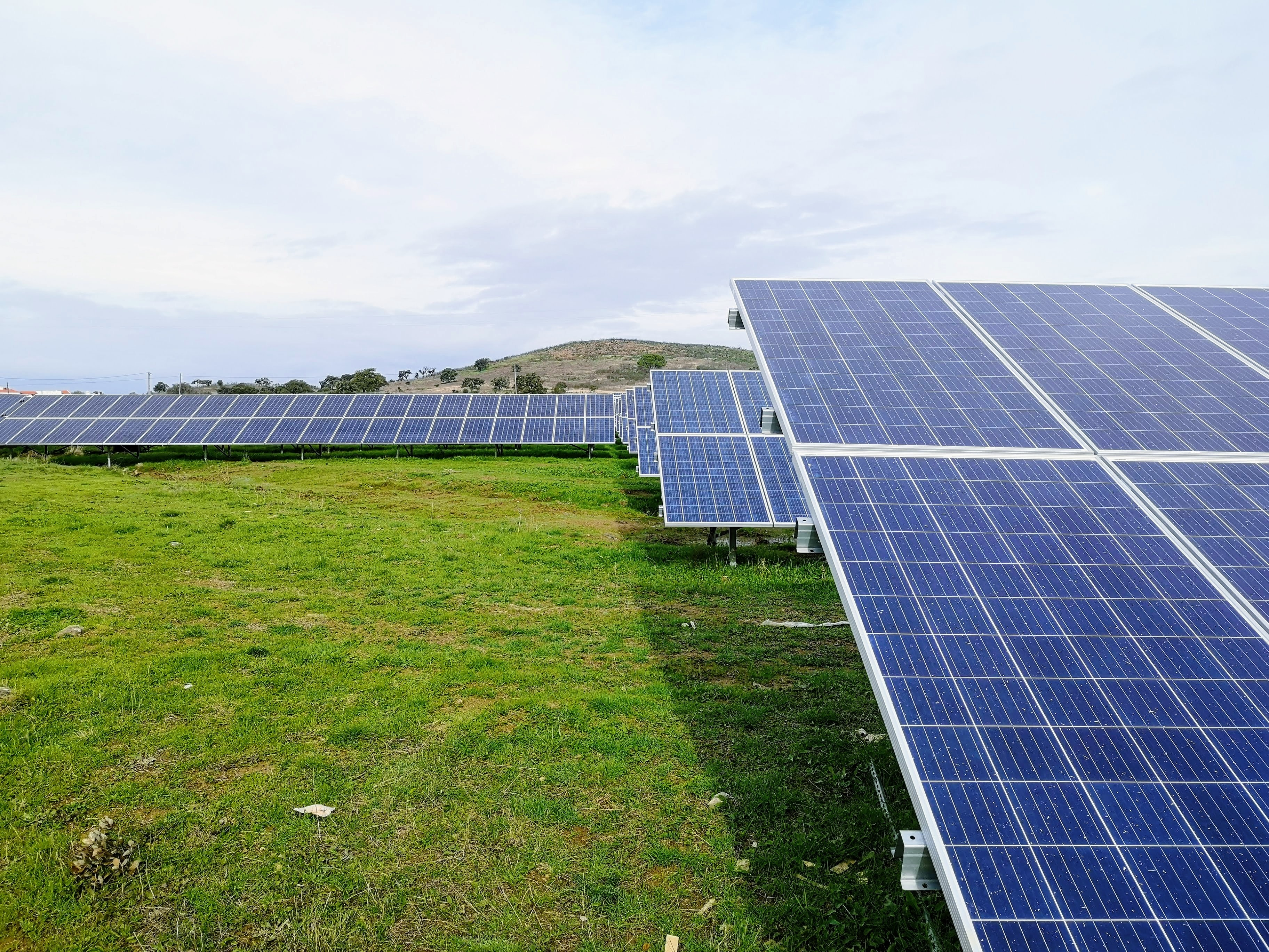 Heeding the call for a green recovery