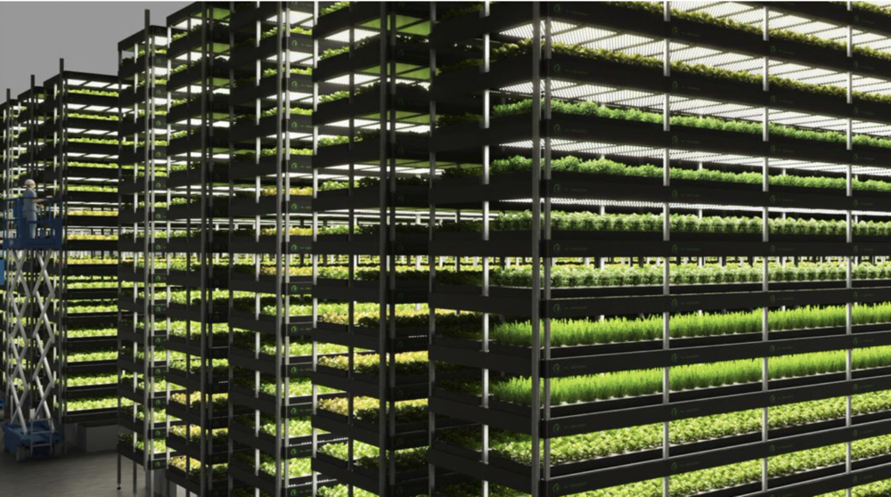 Denmark just opened a huge vertical farm, and it could be a sign of things to come globally