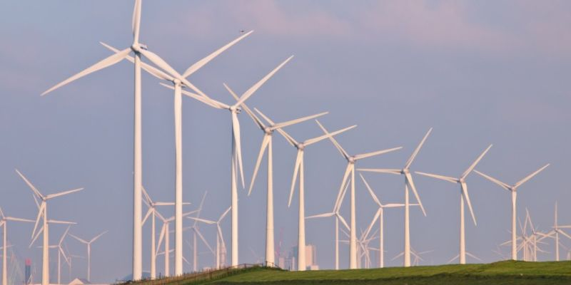 Financing Sri Lanka's Renewable Energy Drive – From Energy Storage to Diversification of Energy Generation