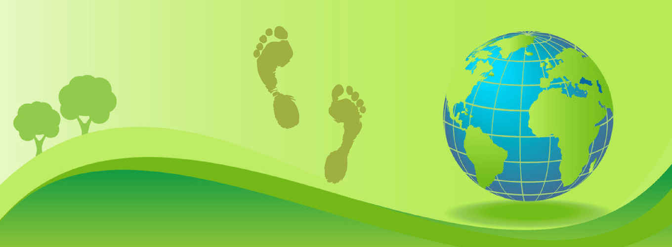 Is it worth tracking your carbon footprint?