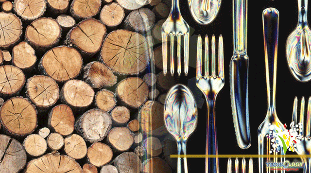 Turning wood Into recyclable, biodegradable plastic